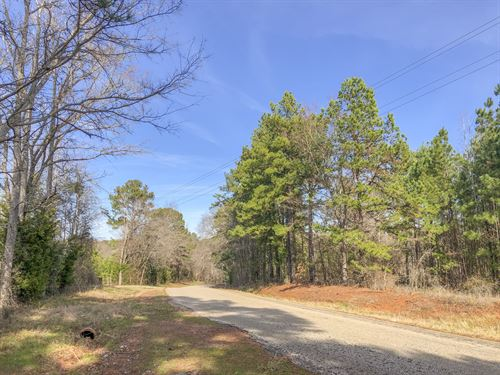 171 Acres Cr 3111 : Jacksonville : Cherokee County : Texas