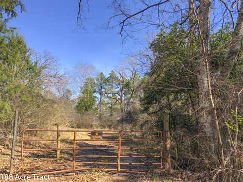 188 Acres Cr 4221 : Jacksonville : Cherokee County : Texas