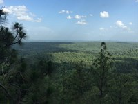 Double Oak Mountain Home Sites : Chelsea : Shelby County : Alabama