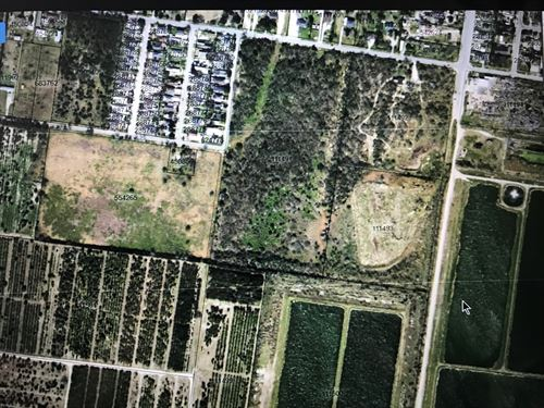 South Texas Land For Sale : Alamo : Hidalgo County : Texas