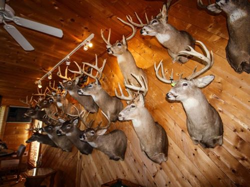 Trophy Whitetail Hunting Camp : Wauzeka : Crawford County : Wisconsin