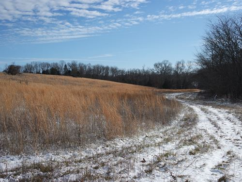 Land For Sale In Southern Missouri : Graff : Wright County : Missouri