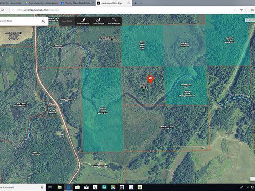 Muskegon River Remote 36 Acres : Merritt : Missaukee County : Michigan