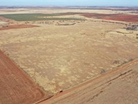 160 Acres Crp Land & Hunting : Alva : Woods County : Oklahoma
