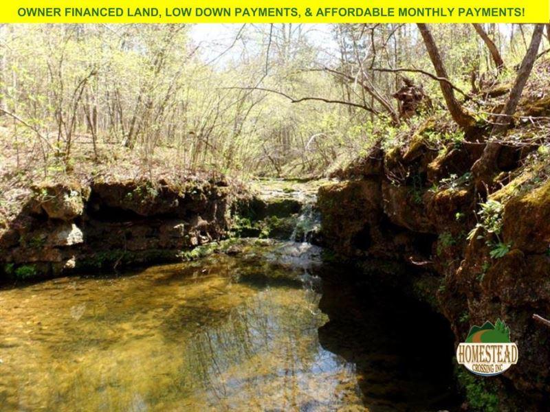 2,000 Feet Creek Frontage And More : Houston : Texas County : Missouri