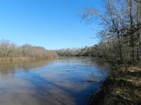 Flint River Hunting Paradise : Montezuma : Macon County : Georgia