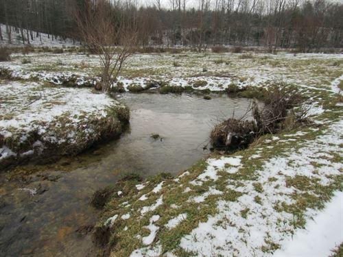 Recreational Land in Floyd, VA : Floyd : Virginia