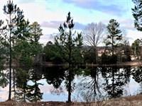Southeast Oklahoma Land For Sale : Albion : Pushmataha County : Oklahoma