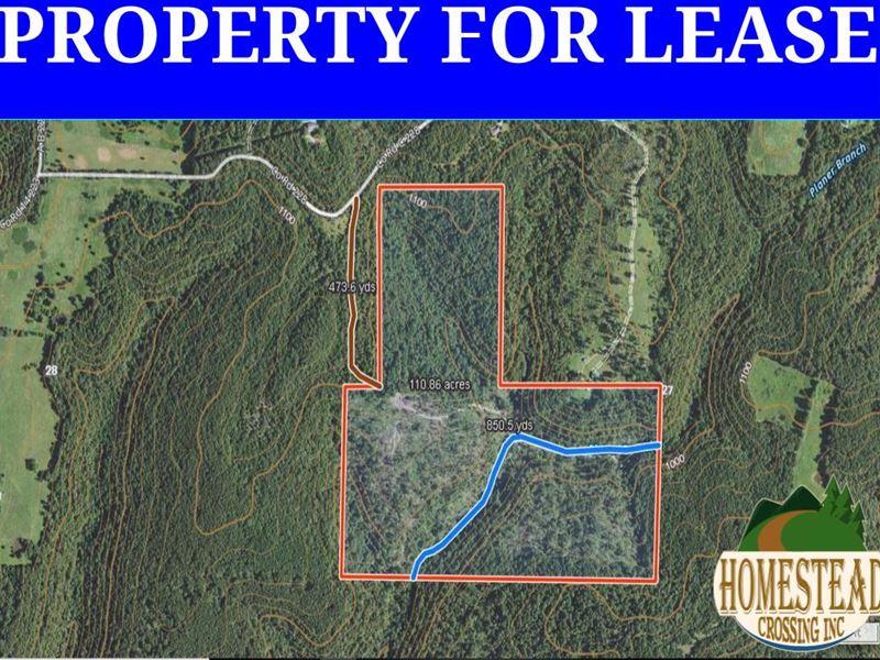 Approximately 110 Acres With Creek : Ava : Douglas County : Missouri