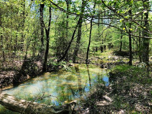 Oklahoma Hunting Land For Sale : Clayton : Pushmataha County : Oklahoma
