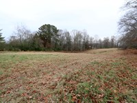 9 Acre Partially Wooded Tract : Cookeville : Putnam County : Tennessee