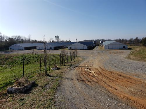 4 House Broiler Poultry Farm : Jasper : Pickens County : Georgia