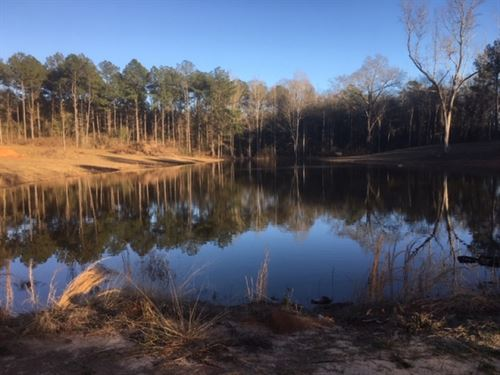 Home And 22 Acres Walthall County : Tylertown : Walthall County : Mississippi