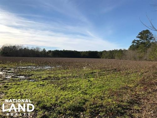 McDaniels Farms, Llc Farm Land/Deer : Summerton : Clarendon County : South Carolina