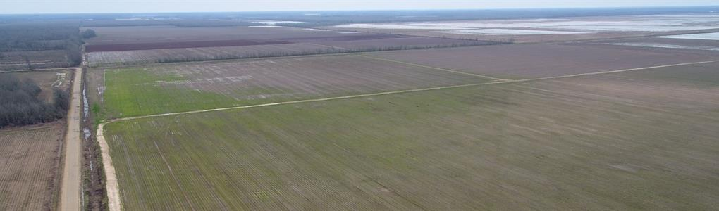 450 Ac, Irrigated Farm With Duck : Hebert : Richland Parish : Louisiana