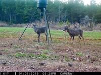 Hickory Grove Hunting Retreat : Hickory Grove : Cherokee County : South Carolina