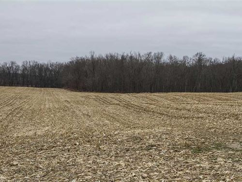 SR 34, 94 Acres, Williams County : Edon : Williams County : Ohio