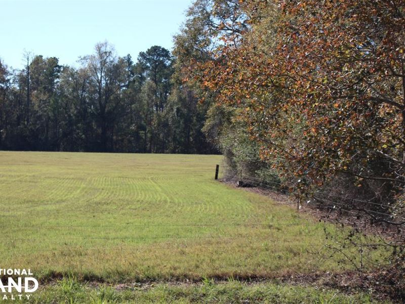 Grubbs Place : Waynesboro : Burke County : Georgia