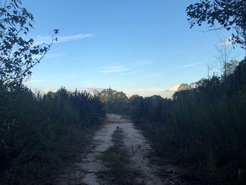 Little Shoal Creek : Hartwell : Hart County : Georgia
