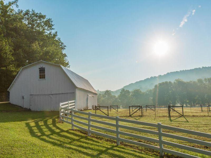 North Georgia 50 Acre Estate : Ringgold : Catoosa County : Georgia