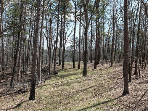 Arkansas Hunting Property For Sale : Melbourne : Izard County : Arkansas