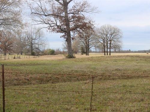 Cattle / Recreational Ranch : De Kalb : Bowie County : Texas