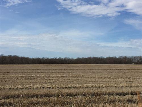 114.31 Farm And Recreational Land : Moro : Lee County : Arkansas