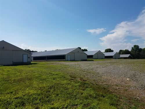 6 House Broiler Poultry Farm : Ellijay : Gilmer County : Georgia
