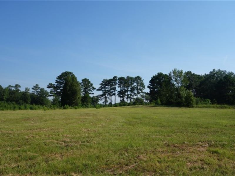 165.77 Acres, Richland County, Sc : Columbia : Richland County : South Carolina