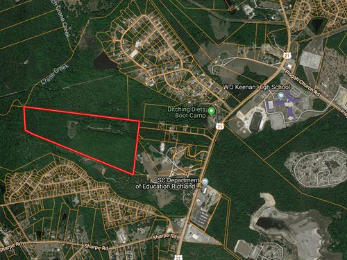 81.7 Acres, Richland County, Sc : Columbia : Richland County : South Carolina