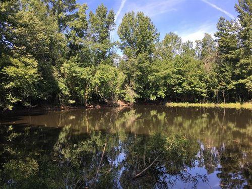 81 Acres Parker Roberts Rd : Cedartown : Polk County : Georgia