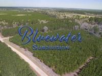 6.02 Acres Bluewater T1-5 : Livingston : Polk County : Texas
