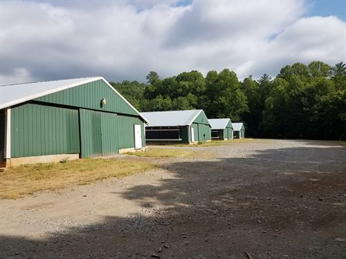 6 House Broiler Poultry Farm : Ellijay : Gilmer County : Georgia