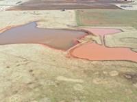320 Acres Cropland & Grass Pasture : Crescent : Logan County : Oklahoma