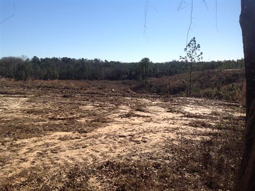 4-011 Rolling Hills Mini Farms Lot : Prattville : Autauga County : Alabama