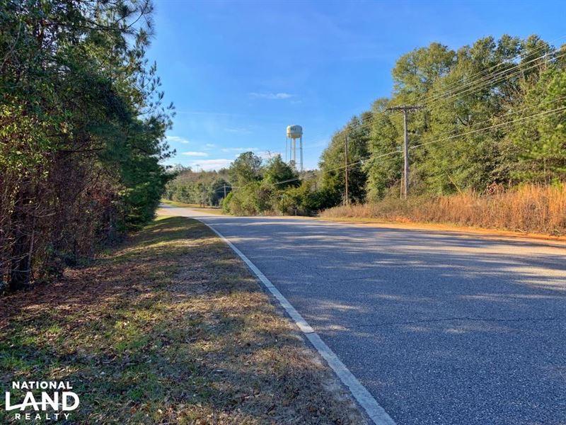 West Cobb Street Grove Hill Tract : Grove Hill : Clarke County : Alabama