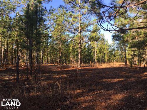 Cassatt Hunting And Recreation : Cassatt : Kershaw County : South Carolina