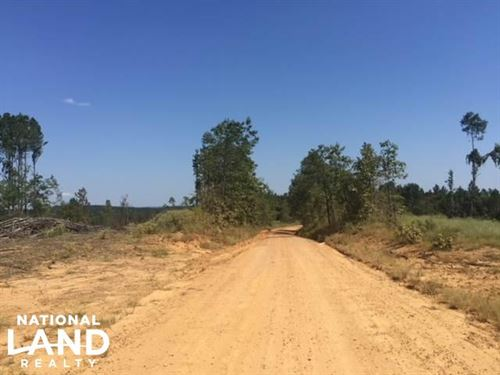140 Acres Freshly Harvested Timber : Gore Springs : Grenada County : Mississippi