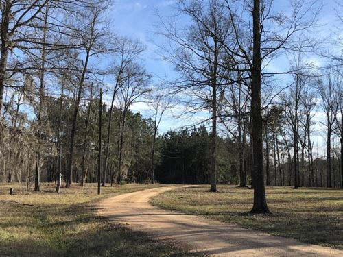Pearl River Retreat Lot 10 : Wanilla : Lawrence County : Mississippi