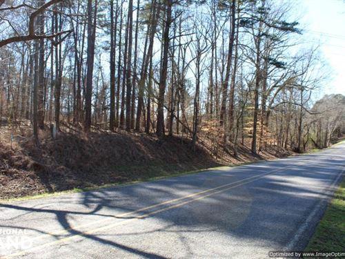 Eden Deer & Turkey Land : Eden : Yazoo County : Mississippi