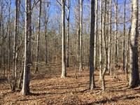 Beautiful Recreational Property : Forsyth : Monroe County : Georgia