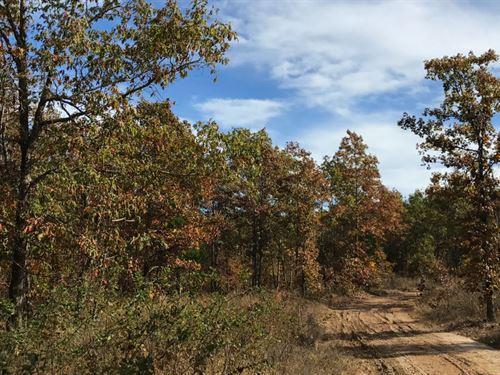 5 Acres Bordering Public Land : Eminence : Shannon County : Missouri