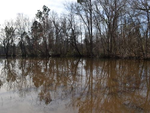 Prong Creek Farms : Swainsboro : Emanuel County : Georgia