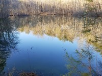 61+/-Acres Wooded, Level, Lake : Sequatchie : Marion County : Tennessee