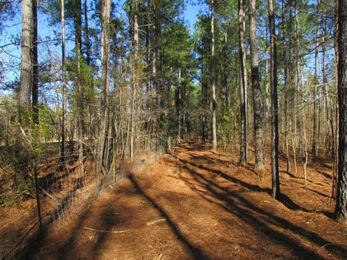 June Burn Road Tracts : Manning : Clarendon County : South Carolina