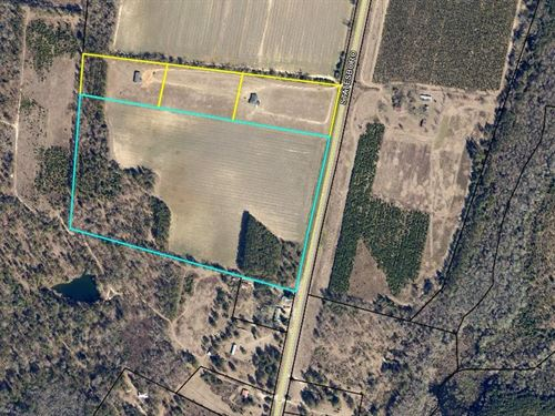 10 Acre Tract Screven County : Sylvania : Screven County : Georgia