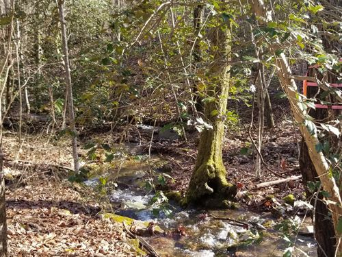 10.4+/- Acres Bring Your Rv : South Pittsburg : Marion County : Tennessee
