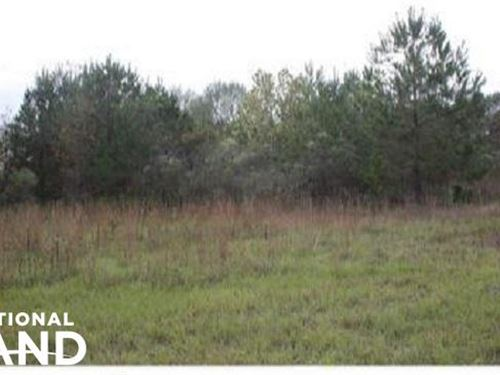 Pelahatchie 6 Acre Homesite : Pelahatchie : Rankin County : Mississippi