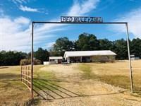 Brick Home On 50 Acres Of Pasture : Kokomo : Marion County : Mississippi