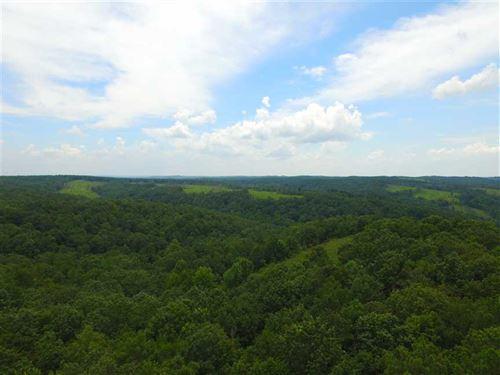 Recreational Tract on Riverton Ros : Riverton : Colbert County : Alabama